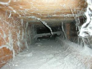 Почистить вентиляционную шахту в многоквартирном доме москва