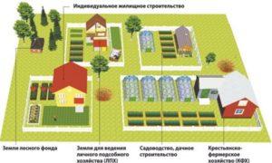 Как оформить землю под лпх в аренду