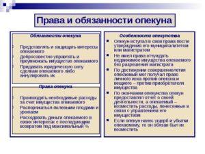 Права и обязанности опекуна в беларуси над недееспособным