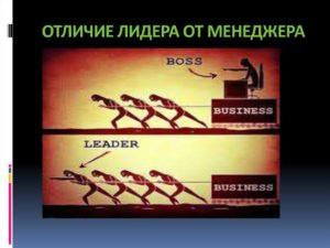 Чем отличаются руководитель и председатель