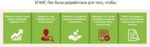 Как настроить браузер для егаис лес