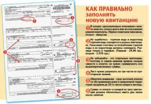 Документ об оплате или документ по оплате