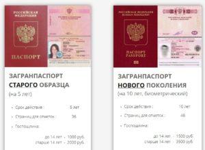 Какие страницы паспорта нужны для заграна