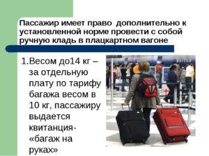Сколько можно взять багажа в поезд
