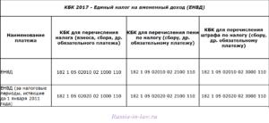 Кбк для енвд в 2020 году ип черняховск
