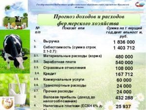 Готовый бизнес план по сельскому хозяйству в виде таблицы