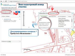 Как узнать зарегистрировали ли земельный участок