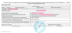 Содержит ли выписка из егрн технический паспорт