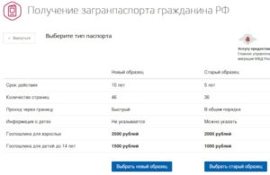Хабаровск мфц оформление загранпасрорта за 1 месяц