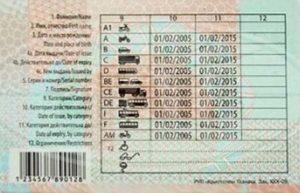 Сколько учиться на а категорию в белоруссии