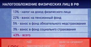 Какие налоги платят физические лица в россии