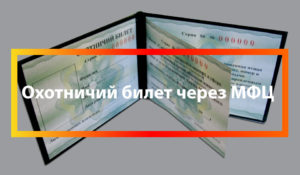 Какие документы нужны в мфц для охотничкго билета