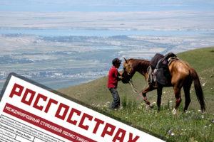 Собенности дмс для киргизов