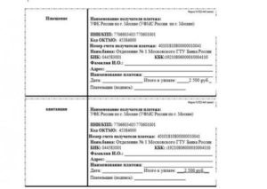 Госпошлина на загранпаспорт санкт петербург