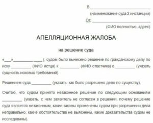 Какие документы нужны для подачи апелляционной жалобы