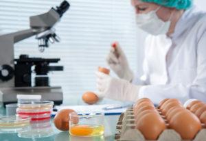 Сколько стоит провести лабораторную экспертизу фермерских продуктов в москве