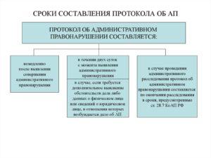 Срок составления протокола по роспотребнадзору