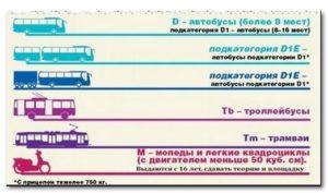Со скольки лет разрешено управлять наземным транспортом гта