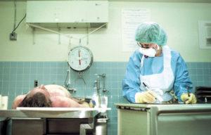 Сколько стоит судебно медицинская экспертиза при смерти