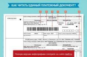 Формирование квитанций на жку в спб