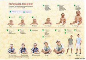 Если у ребенка нет прививок возьмут ли в садик