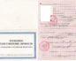 Какие документы нужны для получения временного паспорта